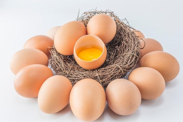 Ingrediente de pato frango crescimento culinária pássaro
