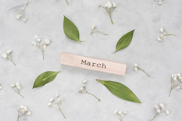 Inscrição de março com folhas e ramos de flores