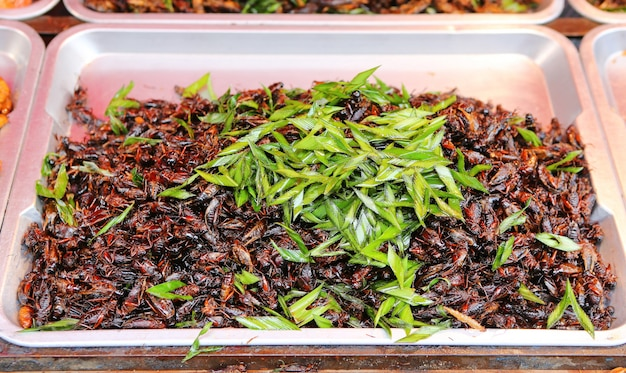 Insetos fritos, comida asiática exótica, cricket frito