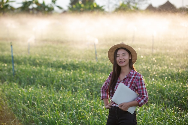 Inspeção de qualidade de jardim aromático por fazendeiros