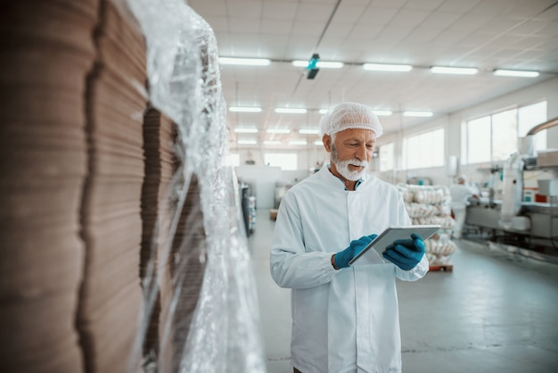 Inspetor adulto sênior caucasiano sério vestido com uniforme branco usando tablet para avaliação de qualidade de alimentos em uma fábrica de alimentos.