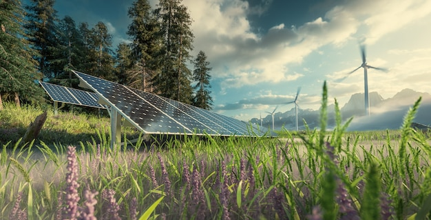 Instalação ambientalmente correta de usina fotovoltaica e parque de turbinas eólicas