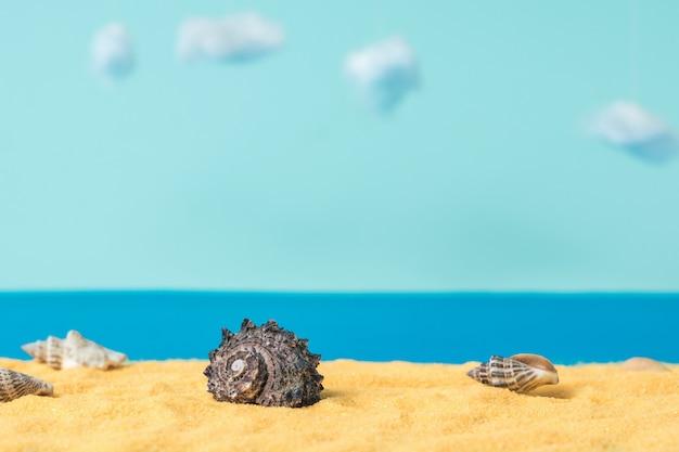 Instalação de um areal com conchas na superfície do mar e do céu. costa do mar com conchas.