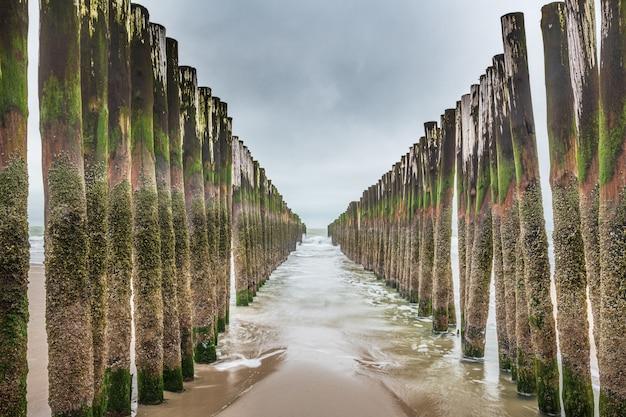 Instalações de quebra de ondas de madeira no mar do norte, zelândia, holanda
