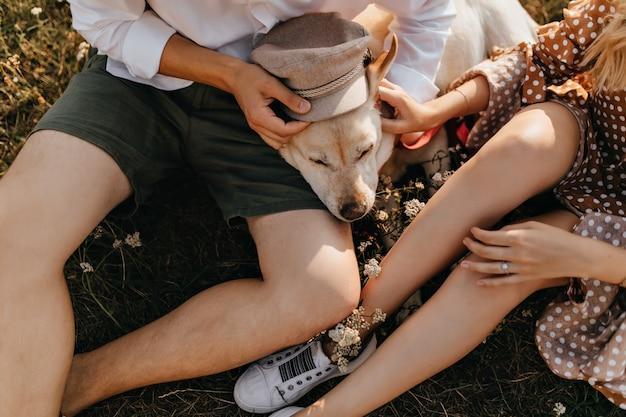 Instantâneo de homem e mulher em roupas de verão, colocando boné bege em labrador retriever.