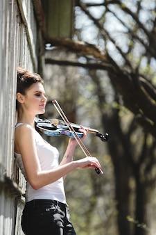 Instrumento estandes violino verão clássica