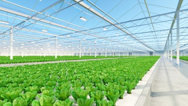 Interior com grande estufa industrial. fábrica de plantas vegetais de interior hidropônico. fazenda de salada verde. piso de concreto. renderização 3d
