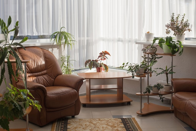 Interior da casa com plantas de casa
