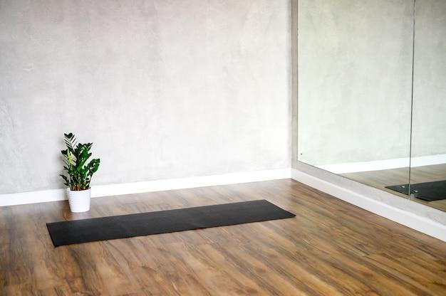 Interior da sala do estúdio para ioga, um tapete de borracha e uma planta de zamioculcas