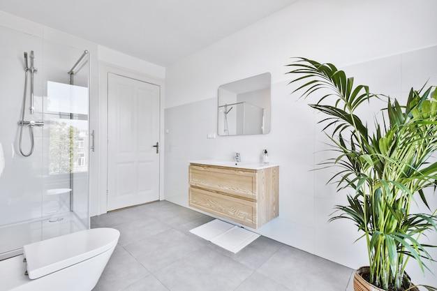 Interior de banheiro leve com vaso de plantas e autoclismo perto de chuveiro e pia em apartamento moderno