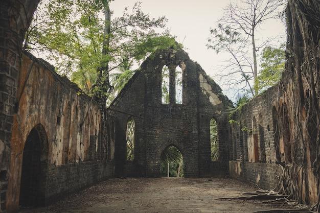 Interior de igreja abandonada onde ervas daninhas e plantas crescem nas paredes e janelas internas. tijolos desintegrados jaziam em primeiro plano. ilha ross, ilhas andaman, índia