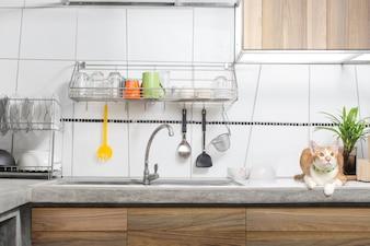 Interior de pia de cozinha branco