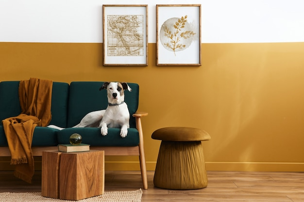 Interior elegante da sala de estar com móveis de design