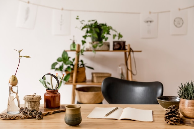 Interior elegante de escritório doméstico com mesa de madeira, acessórios florestais, planta de abacate, prateleira de bambu, plantas e decoração de vime