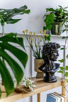 Interior moderno de sala de estar com console de madeira, lindas plantas, folha tropical, livro, planta de ar, prateleira, decoração, parede cinza e acessórios pessoais em uma decoração elegante.