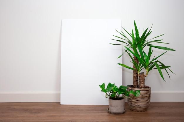 Interior moderno, parede branca com as plantas verdes no assoalho do pvc contra a parede branca com poster ou quadro vazio em branco para o texto. retro