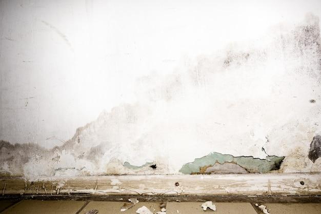 Inundação de água da chuva ou sistemas de aquecimento de piso, causando danos, descascando tinta e bolor.
