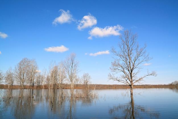 Inundação de primavera no rio pequeno