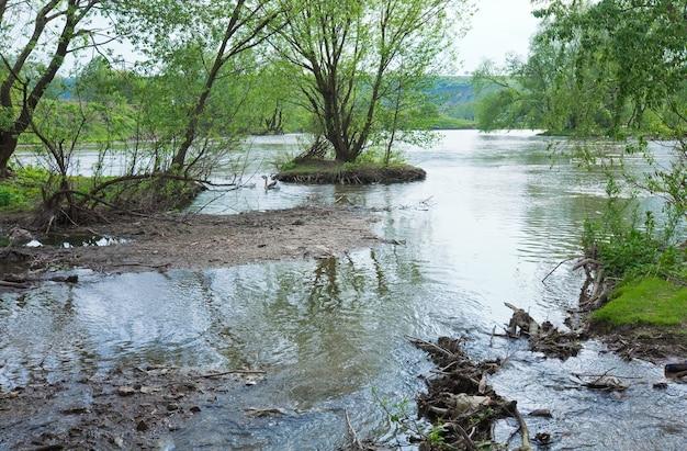 Inundação de rio pequeno país de primavera e casal de gansos em