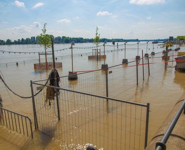 Inundação do rio reno em mainz, alemanha