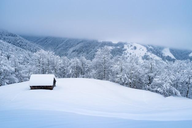Inverno na aldeia de montanha. casa de madeira solitária na neve. paisagem de natal com floresta de neve e nevoeiro