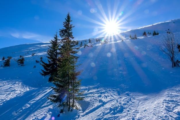 Inverno na eslováquia. estância de esqui jasna. sol forte em uma pista de esqui não equipada