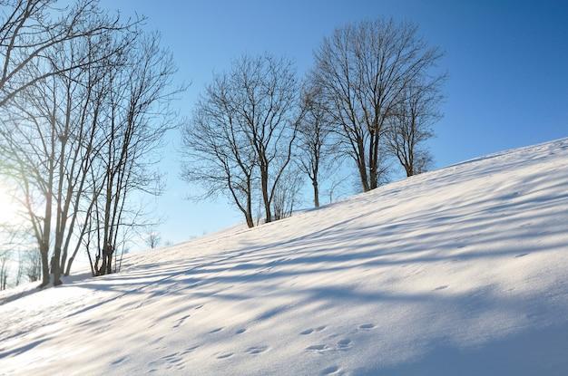 Inverno, paisagem na montanha