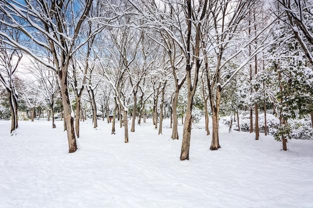 Inverno russo
