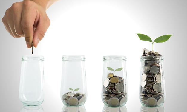 Investir seu orçamento para expandir seus negócios com regador
