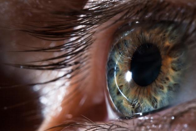Íris bonita e a pupila do olho