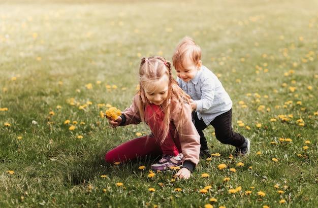 Irmã e irmão brincam no parque no verão e colhem um buquê de flores