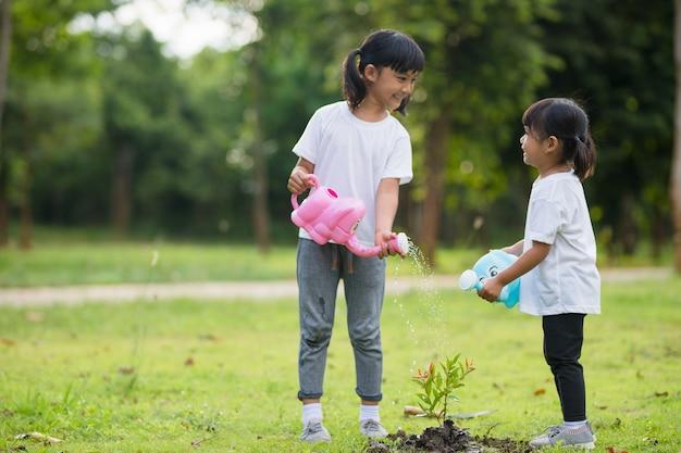 Irmão asiático regando árvore jovem num dia de verão