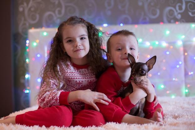 Irmão e irmã brincar com o cachorro no ano novo