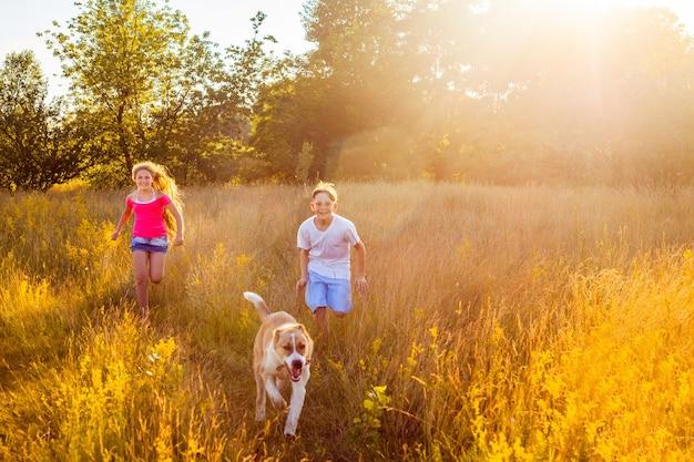 Irmão e irmã correm em um campo verde com seu lindo cachorro de estimação, alabai.