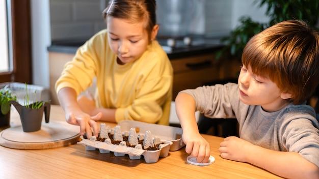 Irmão e irmã mais novos plantando sementes em casa