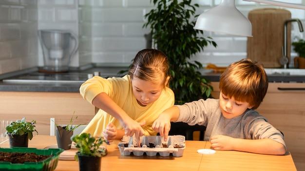 Irmão e irmã mais novos plantando sementes