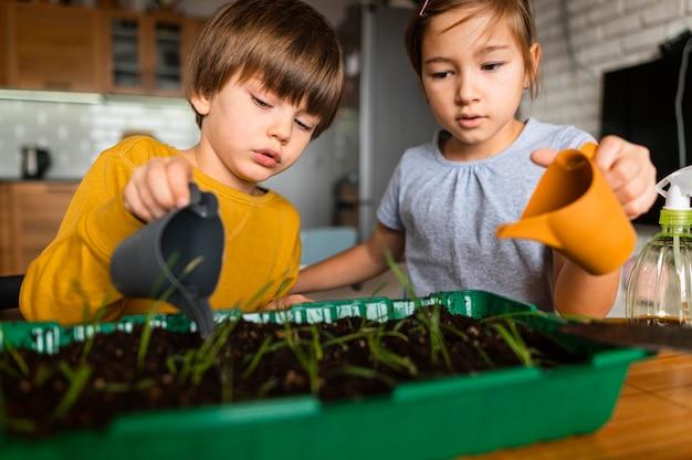 Irmão e irmã mais novos regando as plantações em casa