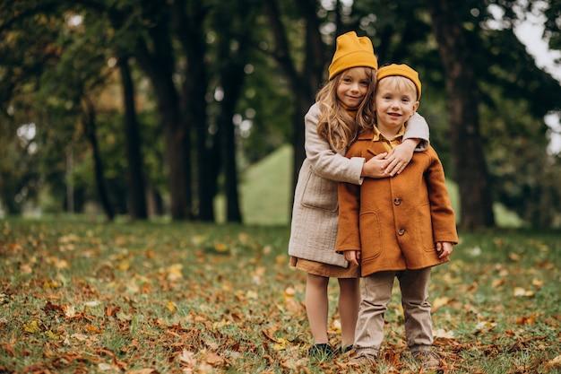 Irmão e irmã se divertindo juntos no parque