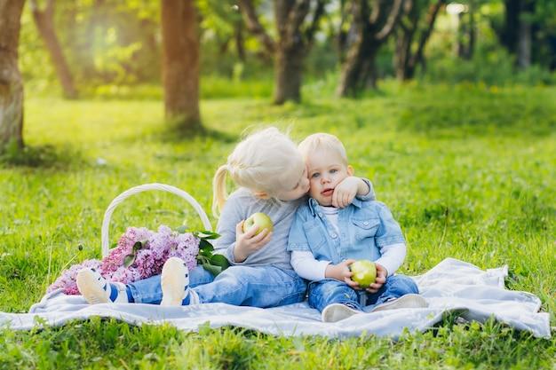 Irmão e irmã sentada no prado de verão