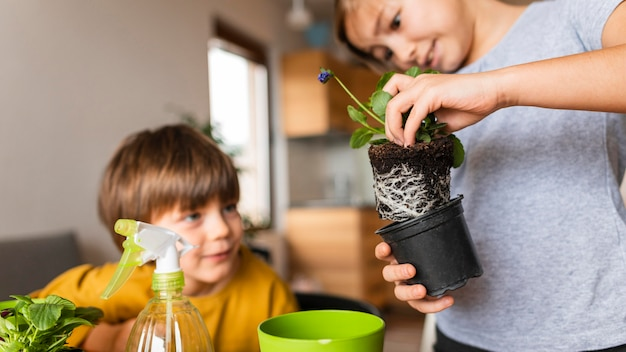 Irmãos plantando flores em vaso