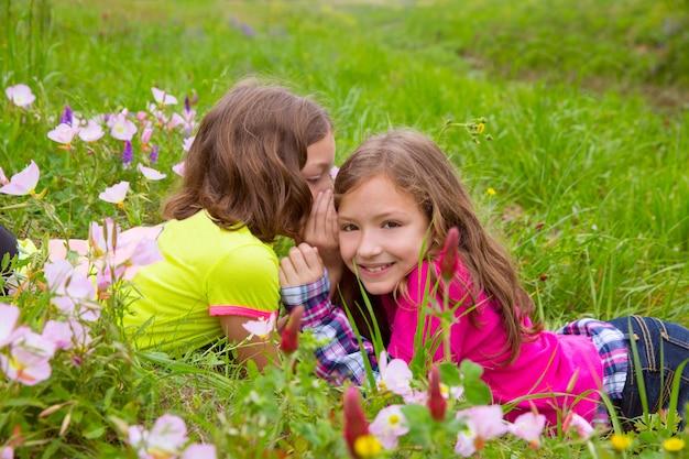 Irmãs gêmeas feliz jogando a orelha sussurrando no prado