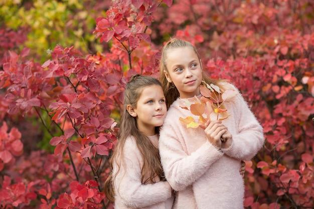Irmãzinhas meninas no outono park com folhagem vermelha brilhante