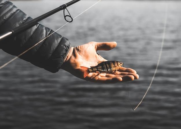 Isca de natação ou wobbler na vara de pescar para peixes predadores e lúcios na palma da mão