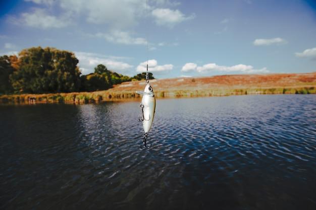 Isca pesca, penduradas, contra, lago
