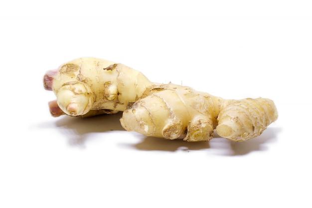 Isolado de raiz de gengibre cru em branco. a raiz de gengibre se originou como flora do solo de florestas tropicais de planície em regiões do índio. amplamente utilizado como tempero ou remédio popular.