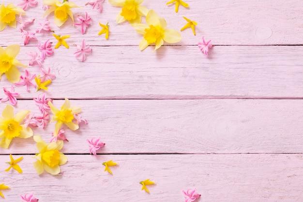 Jacinto-de-rosa e amarelo narciso no fundo rosa de madeira