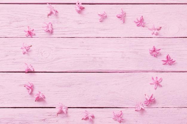 Jacinto rosa sobre fundo rosa de madeira