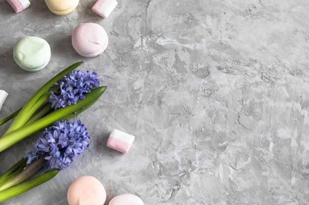 Jacintos roxos de primavera com marshmallows e fitas em cimento cinza