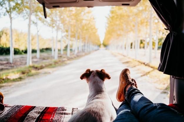 Jack cute russell cão e mulher pernas relaxantes em uma van. conceito de viagens