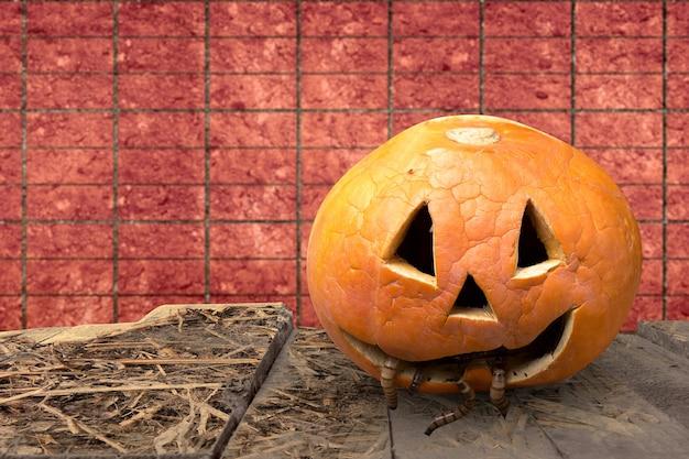 Jack-o-lantern com minhocas em uma mesa de madeira com fundo de parede de tijolos